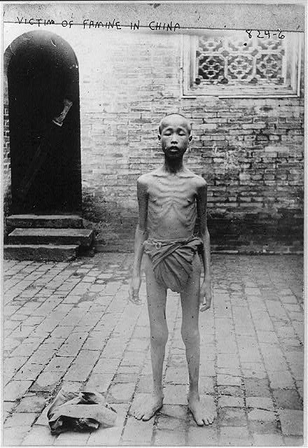 Image result for the great chinese famine