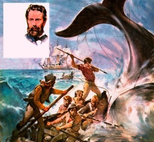 They Lived Their Books: The Quest for Moby Dick