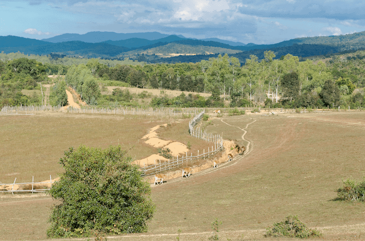 Fields near Plain of Jars - Site 3, Xiangkhouang Province, Laos (2017) Jakub Hałun   Wikimedia Commons